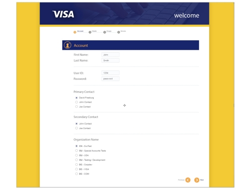 VISA / Ingenious Ideas
